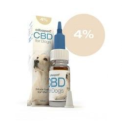 Huile CBD 4% pour chiens -...